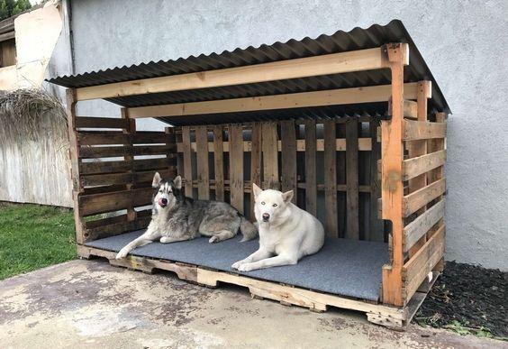 caseta de perro palets